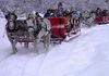Nearby sleigh rides