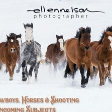 Ellen Nelson: Cowboys, Horses & Oncoming Subjects