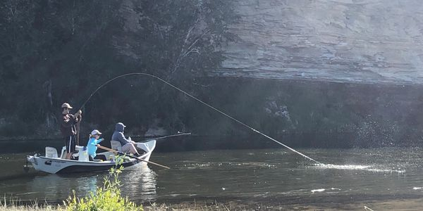 Fontenelle Dam fly fishing guides