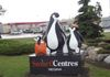 "Regina - Penguins - 2125 Prince of Wales Dr & Victoria Ave GPS: 50°26'49.4""N 104°31'59.4""W"