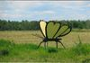 "Pierceland - Butterfly - east of town in front of Ron & Lou Pikawicz Farm GPS: 54°20'31.3""N 109°43'34.9""W"