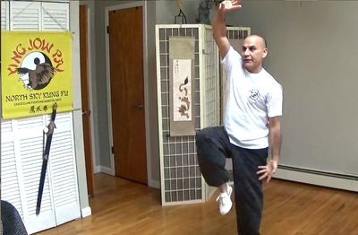 Kung fu drills with Sifu Dario