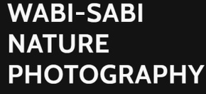 Wabi-Sabi Nature Photography