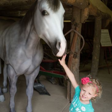 Child visiting the Workhorse Collection during a special event at the Heritage Farm Museum