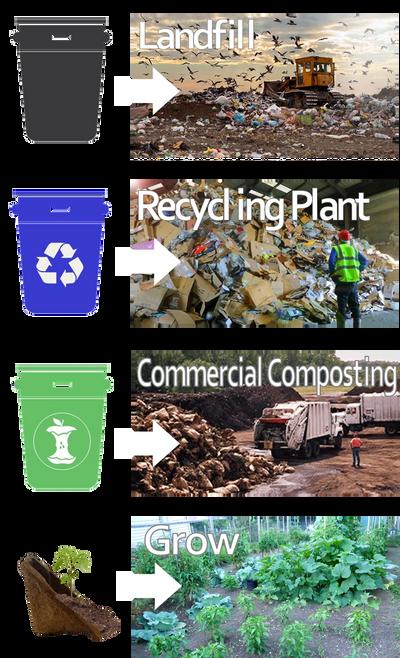 Упаковочные материалы могут оказаться на свалках, заводах по переработке, коммерческом компостировании или, что еще лучше, с CowPots Packaging, где вы сможете расти.
