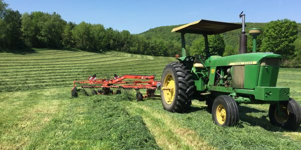 We grow all the forages to feed our cows, john deere tractor used to rake hay crop midsummer.