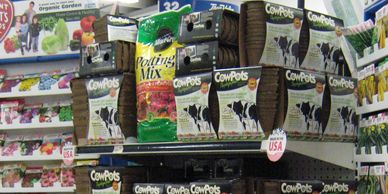 CowPots retail packs on display with seed rack at a True Value store.