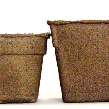 Range of biodegradable pot sizes, 3 inches to 5 inches for divers growing needs.