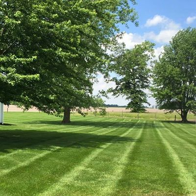 lawn care services fertilization weed control grass pest mosquito Anderson Pendleton Noblesville