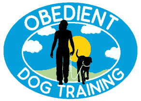 Obedient Dog Training