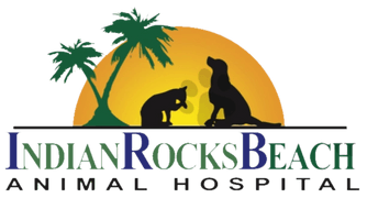 Indian Rocks Beach Animal Hospital