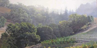 landscapes, winery, napa valley