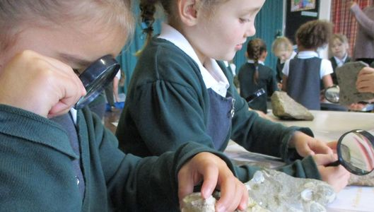 KS1 KS2 dinosaur workshop for schools