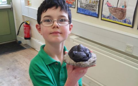 Fossil trilobite in primary school science workshop on KS2 rocks and fossils topic