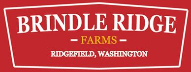 Brindle Ridge Logo #2