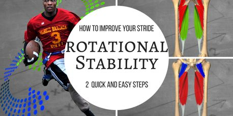 adductors rotational stability stride