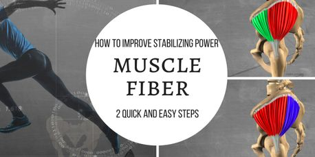 stabilize muscle fiber glutes rotation