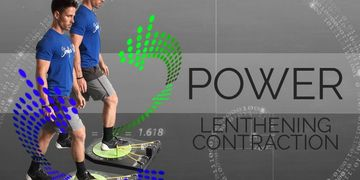 power lengthening muscle contraction