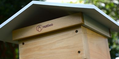 native bee hive rooftop