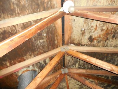 Mold in the attic on sheeting and trusses