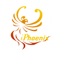 IPHOENIX TECHNOLOGY CORP