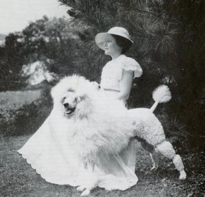 Old photo of Standard Poodle standing with woman