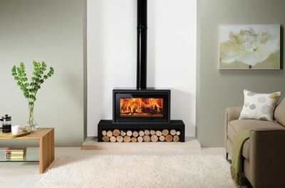 Stylish wood burning fire from our extensive range