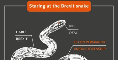 Staring at the Brexit Snake