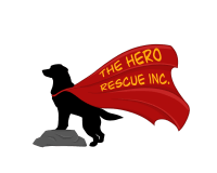The Hero Rescue