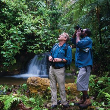 Experienced bird guides New Britain, Papua New Guinea.