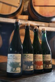 Best French hard apple cider from Normandy winning cider competitions