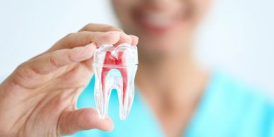 Root Canal Dentist in Cranberry