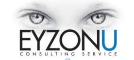 EYZONU Consulting Services
