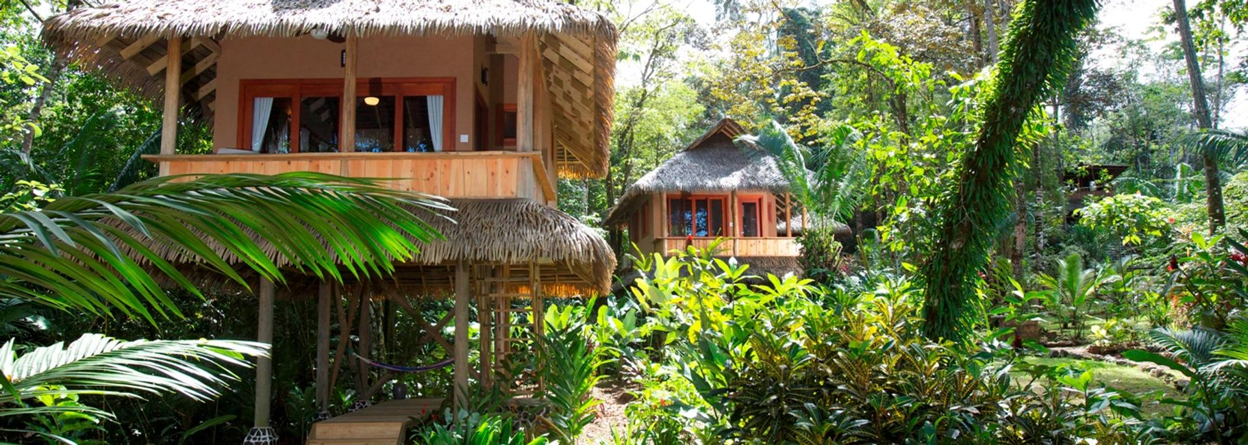 Osa Peninsula Tree top hotel rooms bring nature to you.