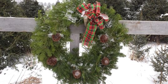 Christmas Wreath Barclay's Tree Farm Choose and Cut Christmas Trees Cranbury, NJ