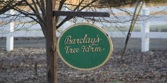 Classic Barclay's Tree Farm Sign Barclay's Tree Farm Choose and Cut Christmas Trees Cranbury, NJ
