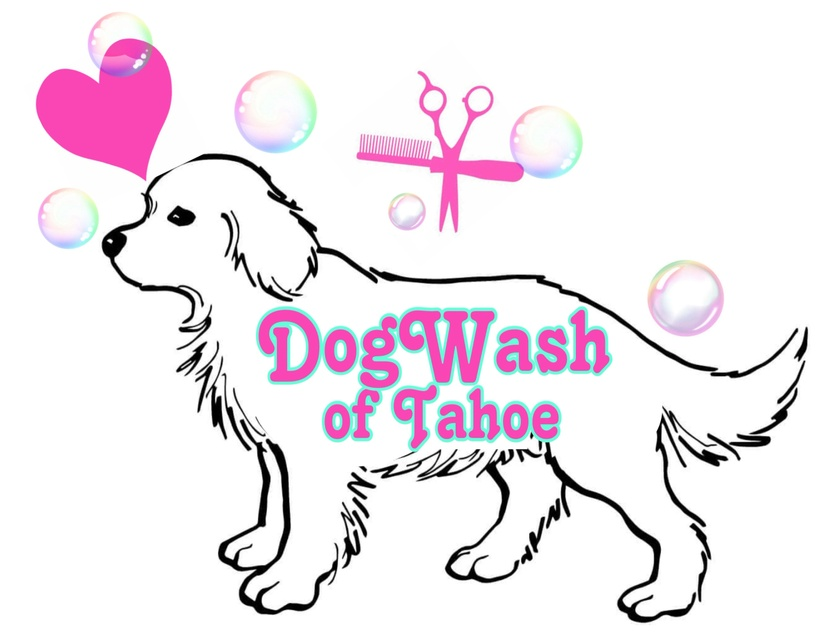 Dog Wash of Tahoe