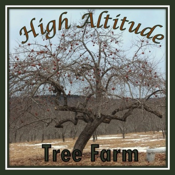 High Altitude Tree Farm