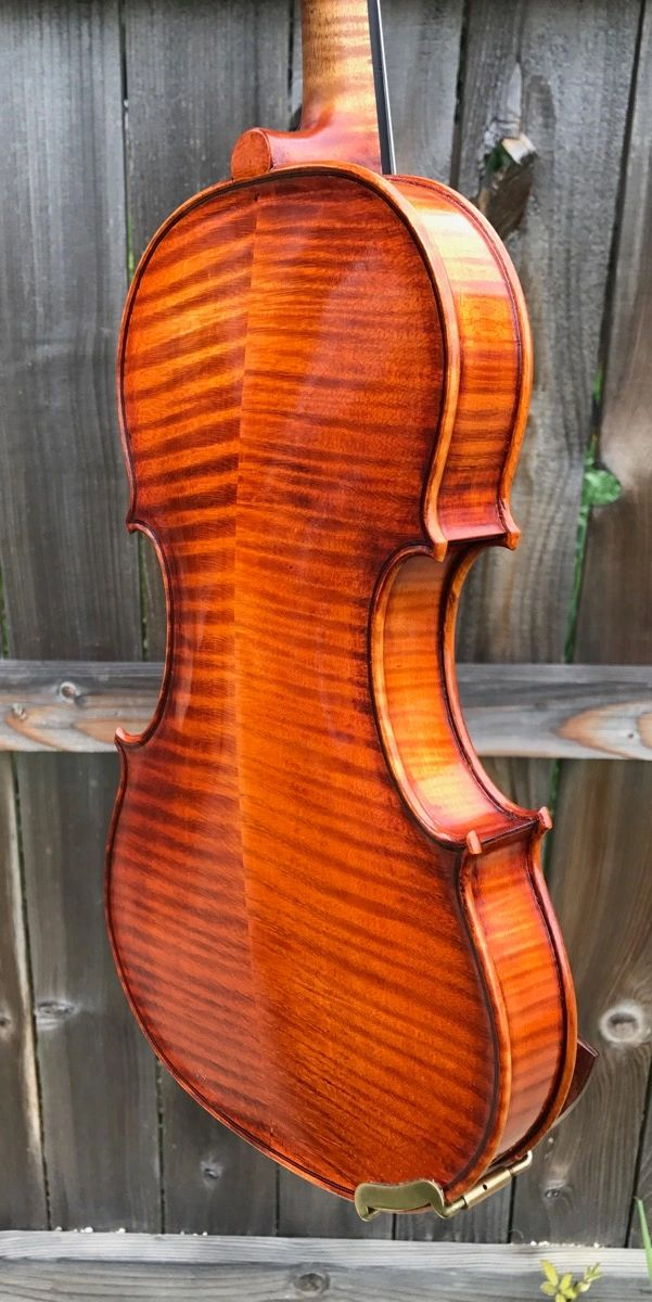 Violin back from Bosnian Maple