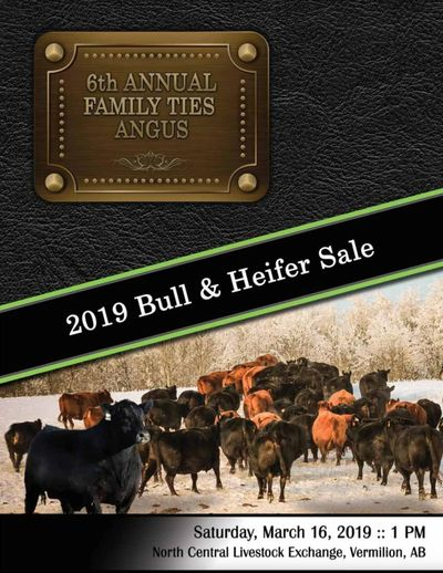 2019 Family Ties Angus 6th Annual Bull & Heifer Sale