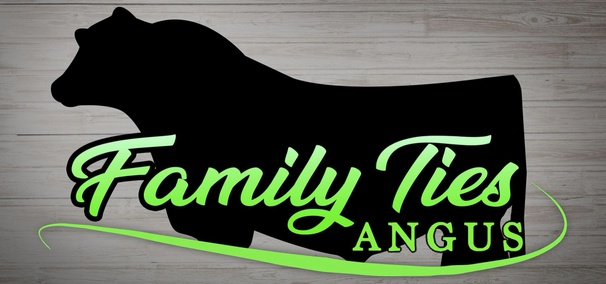 Family Ties Angus