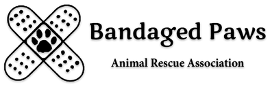 Bandaged Paws Animal Rescue