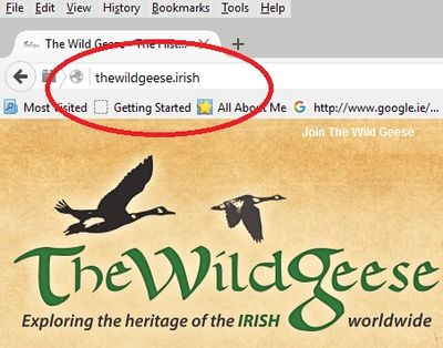 A screenshot from TheWildGeese.irish homepage highlighting its URL.