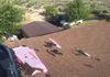 Shingles Roofing in Wilmington Metal Roofing in Wilmington Roofer in Wilmington