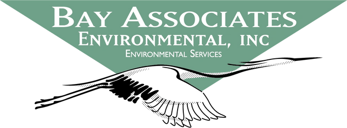Bay Associates Environmental, Inc.