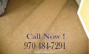 Foothills Steam Carpet Cleaners Fort Collins CO Since 1974