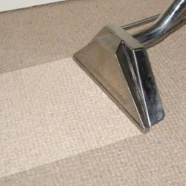 Green Professional Commercial Deep Steam Carpet Cleaners Wellington CO