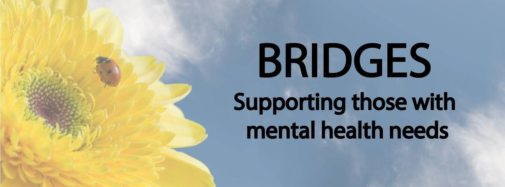 BRIDGES Supporting those with mental health needs. Yellow flower with ladybug against a sky