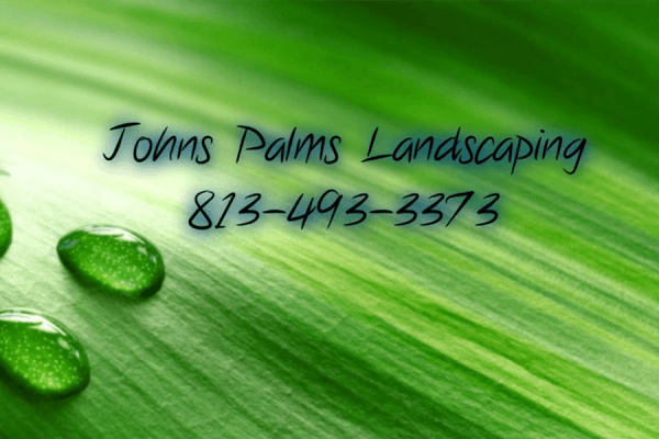 Johns Palms Landscaping