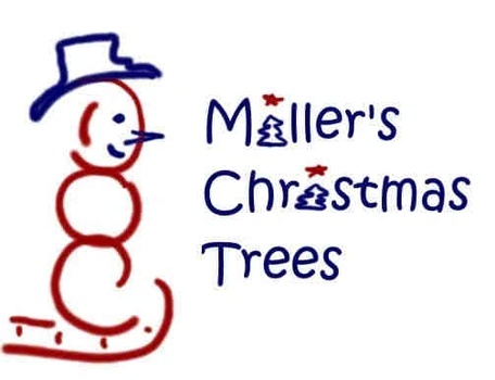 Doc Miller's Christmas Trees